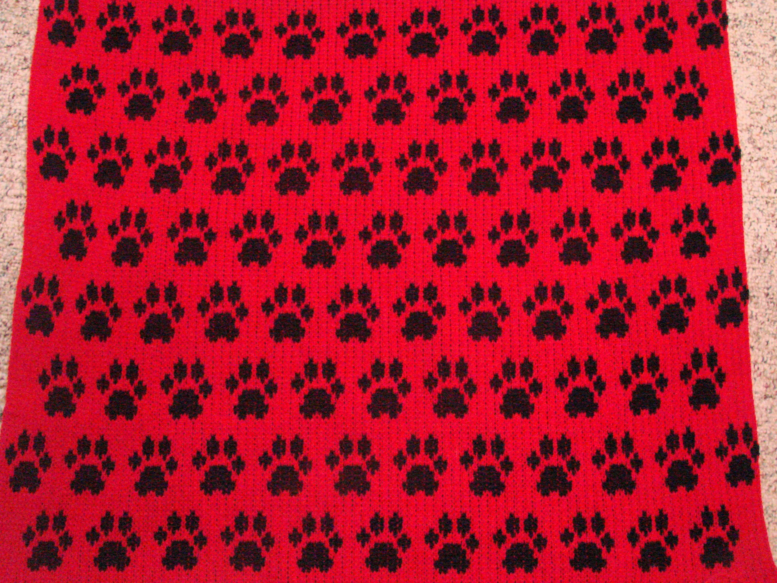 Knitted Dog Coat | Cckittenknits\'s Weblog